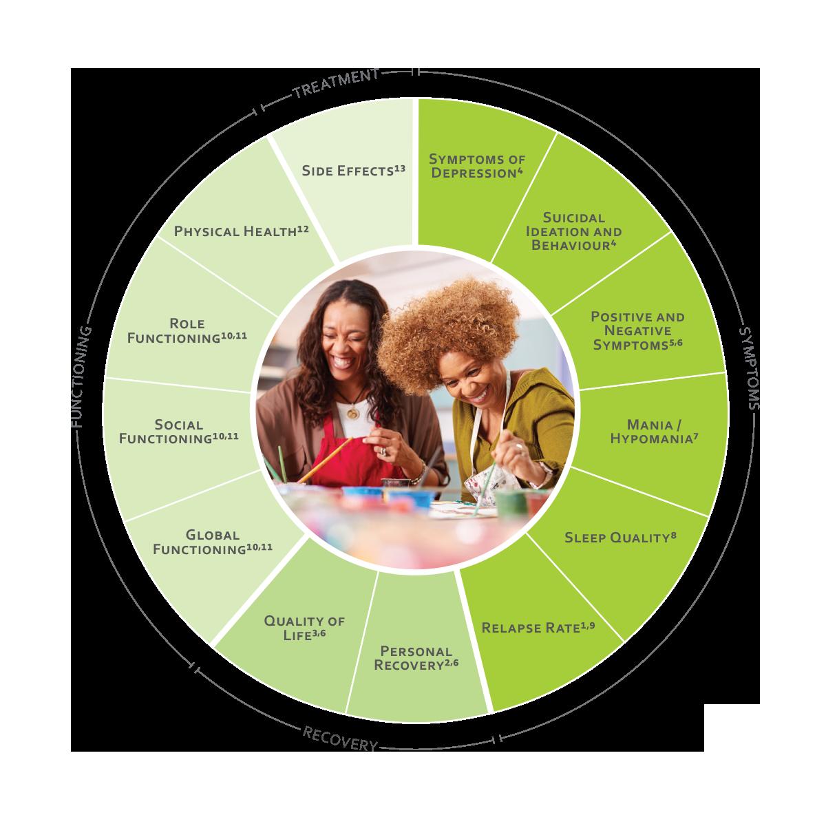 ICHOM Standard Sets Psychotic Disorders Outcomes Wheel